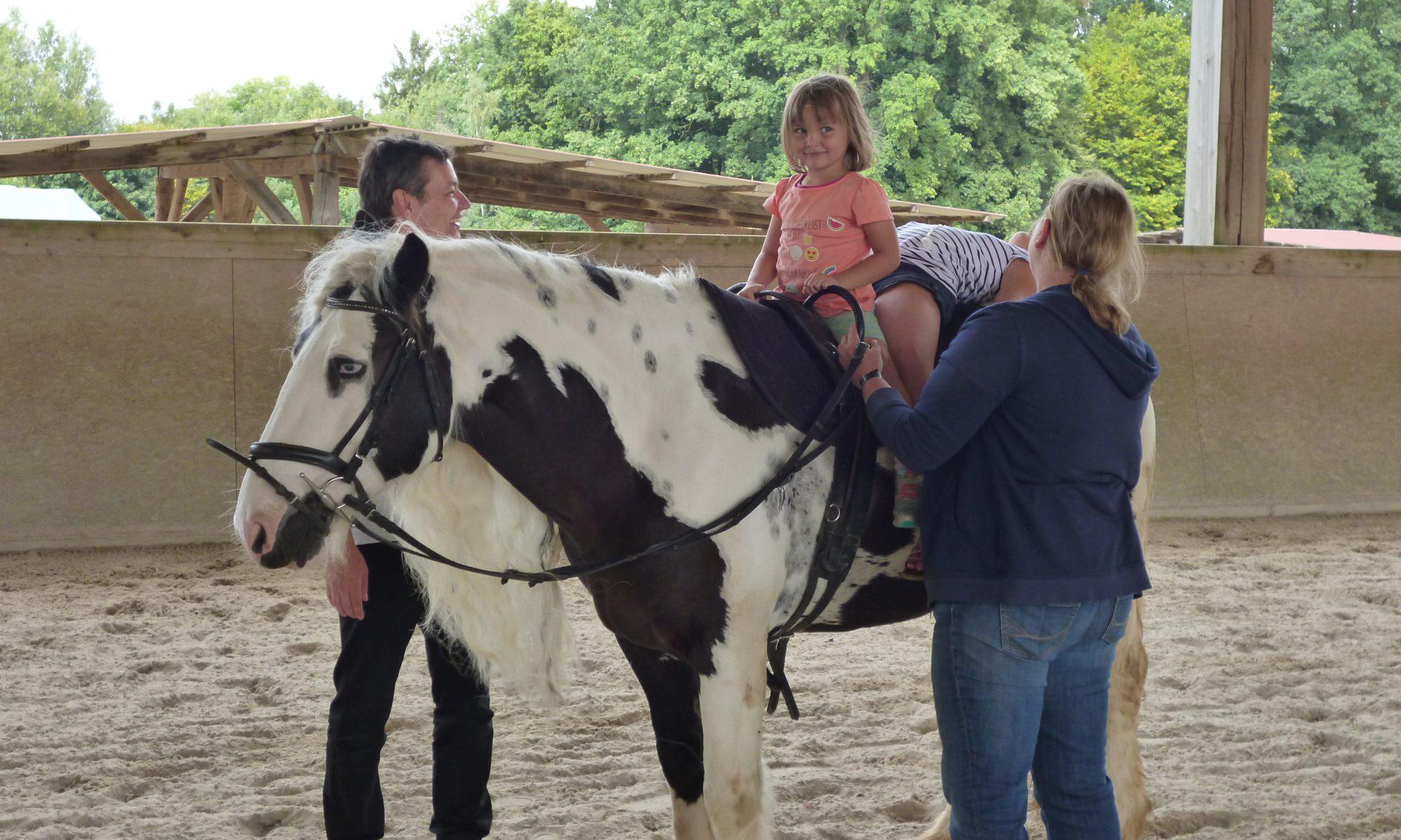 Lena's Pferde